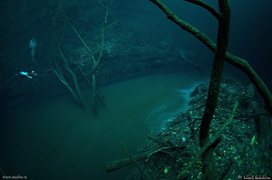 Underwater River, Cenote Angelita, Mexico